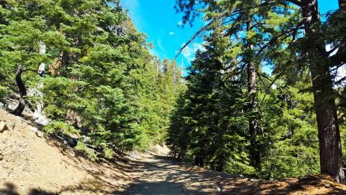 Big Horn Mine Trail